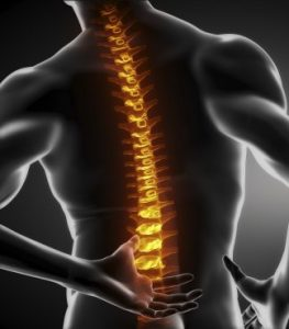 Back Pain Relief is our Specialty at Baker Chiropractic and Wellness